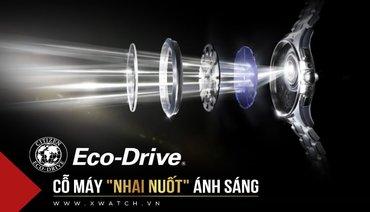 """Tất Tần Tật Về Đồng Hồ Citizen Eco Drive: Cỗ Máy """"Nhai Nuốt"""" Ánh Sáng!"""