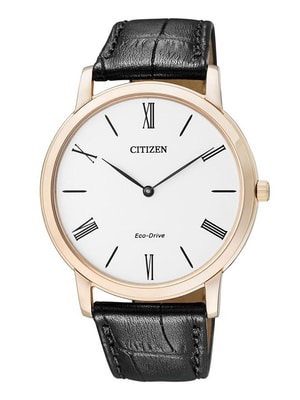 Đồng hồ Citizen AR1113-12B