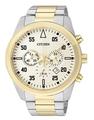 Đồng hồ Citizen AN8094-55P