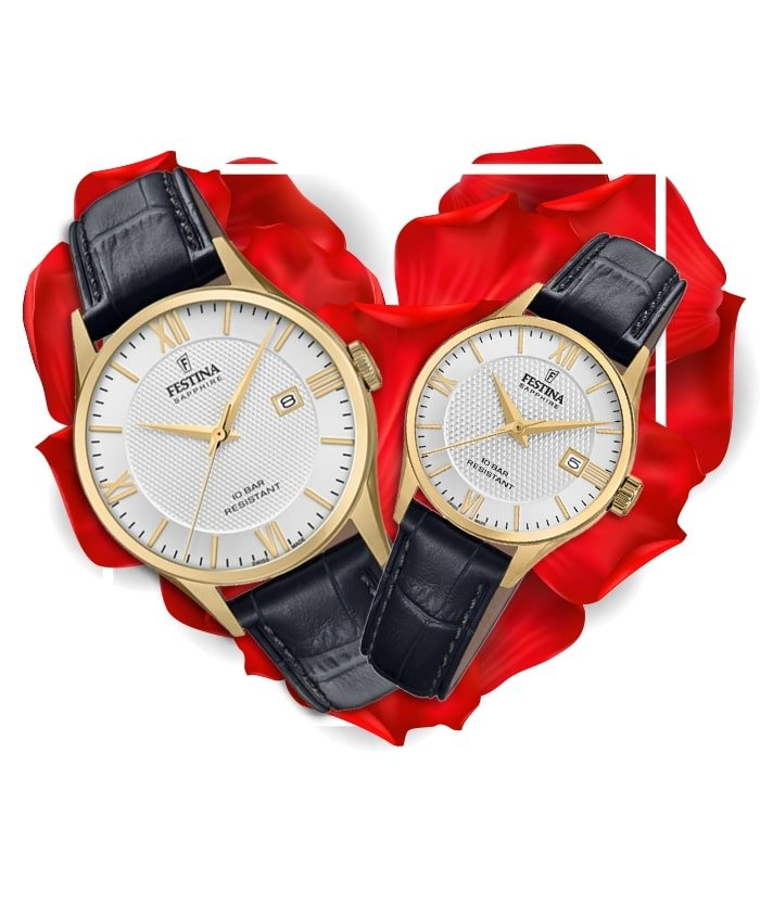 Đồng hồ đôi Festina F20010/2 + F20011/1