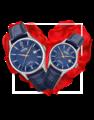 Đồng hồ đôi Festina F20007/3 + F20009/3 0