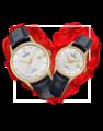 Đồng hồ đôi Festina F20010/2 + F20011/1 0