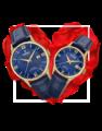 Đồng hồ đôi Festina F20010/3 + F20011/3 0
