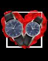 Đồng hồ đôi Festina F20248/3 + F20254/3 0